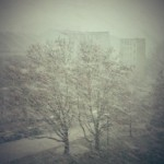 1. Dezember – Schnee